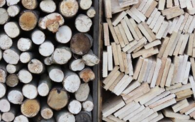 The different kinds of wood